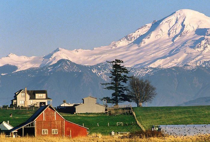 Mt. Baker Farmland
