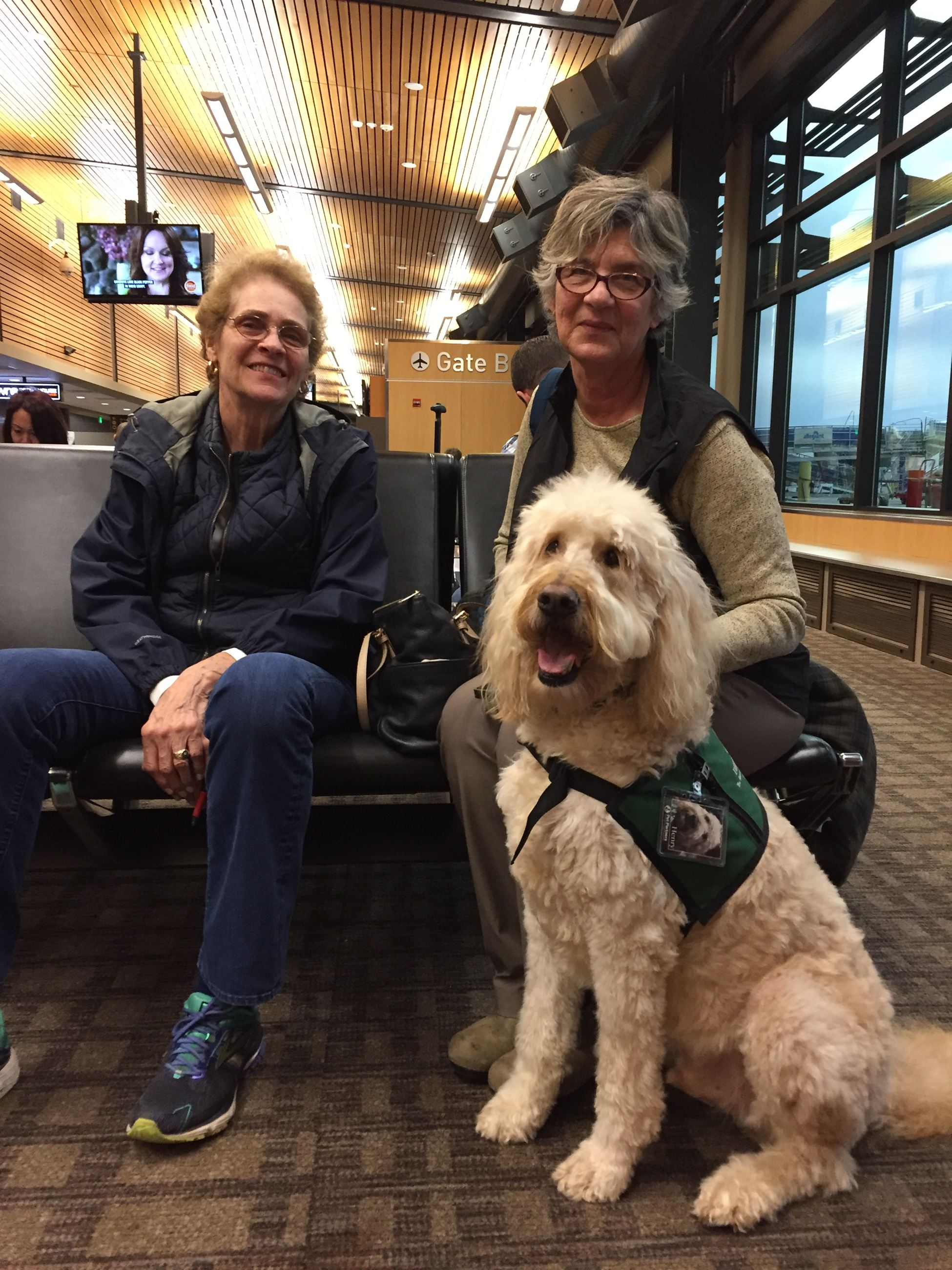 Whatcom Therapy Dog