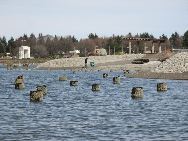 Beach at Blaine Marine Park