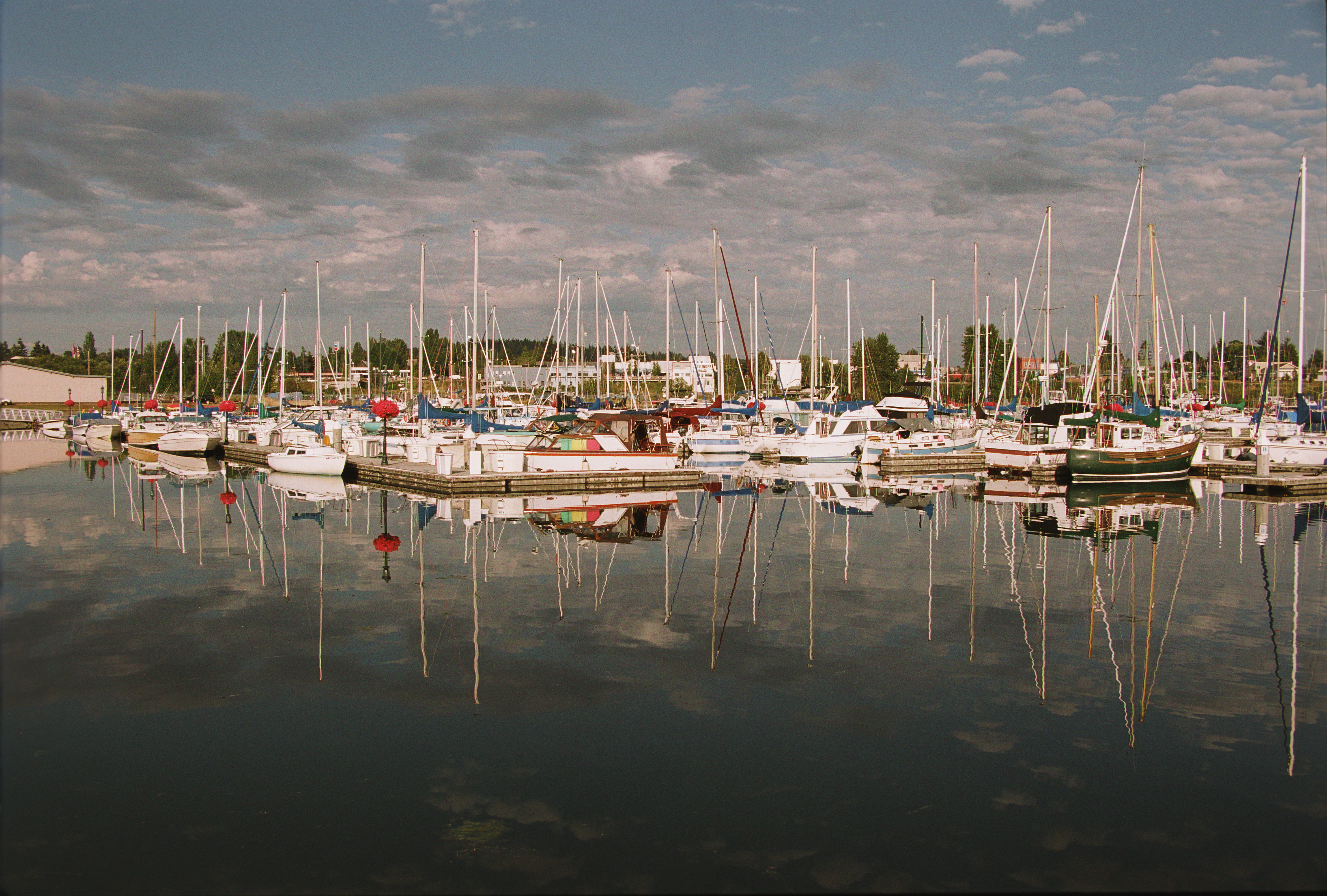 Boats in Blaine Harbor