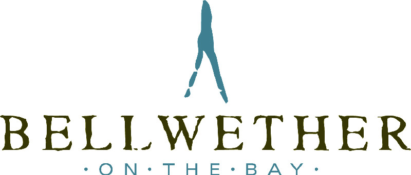 Bellwether on the bay logo